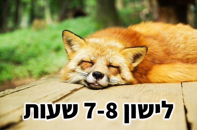 לישון 7-8 שעות